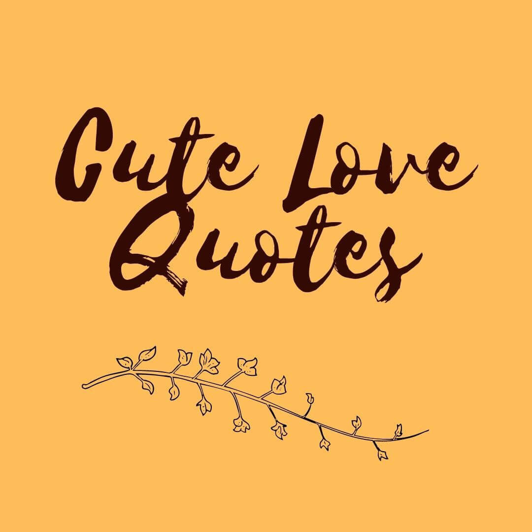 Cute Love Quote free image